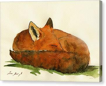 Fox Sleeping Painting Canvas Print by Juan  Bosco