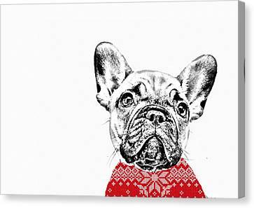 French Bulldog Portrait Canvas Print