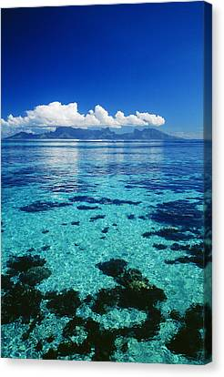 French Polynesia, Moorea Canvas Print by Dana Edmunds - Printscapes