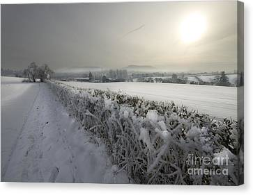 Frozen Britain Canvas Print by Angel  Tarantella