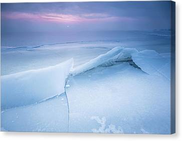 Canvas Print featuring the photograph Frozen by Davorin Mance