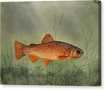 Gila Trout Canvas Print