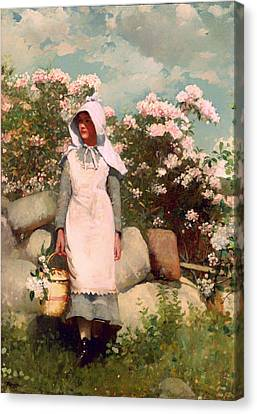 Stonewall Canvas Print - Girl And Laurel by Mountain Dreams