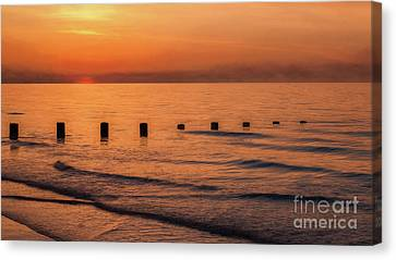 Canvas Print featuring the photograph Golden Sunset by Adrian Evans