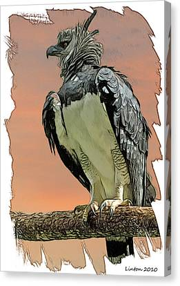 Harpy Eagle Canvas Print by Larry Linton