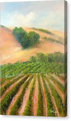 Heart Mountain Canvas Print by Sally Seago