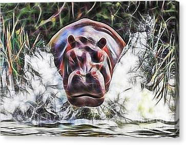 Hippopotamus Canvas Print - Hippo by Marvin Blaine