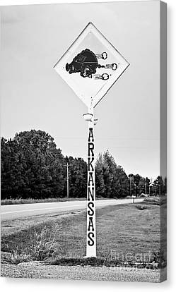 Hog Sign Canvas Print by Scott Pellegrin