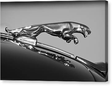 Jaguar Hood Ornament 2 Canvas Print
