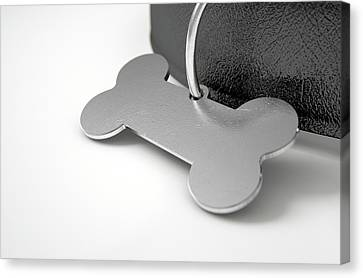 Tag Canvas Print - Leather Collar With Tag by Allan Swart