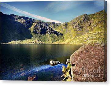Levers Water Canvas Print