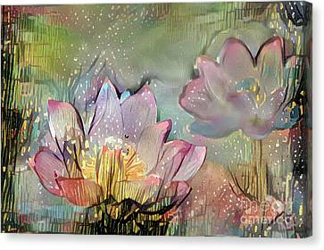 Aquatic Plant Canvas Print - Lovely Waterlilies by Amy Cicconi
