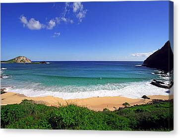 Makapuu Beach Canvas Print by Kevin Smith