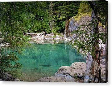 Mcdonald Creek 10 Canvas Print