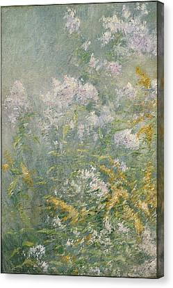 Meadow Flowers Canvas Print by John Henry