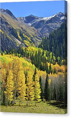 Canvas Print featuring the photograph Million Dollar Highway  by Ray Mathis