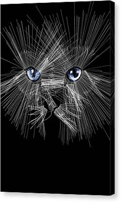 Mister Whiskers Canvas Print by ISAW Gallery