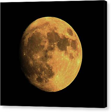Moon Canvas Print by Rowana Ray