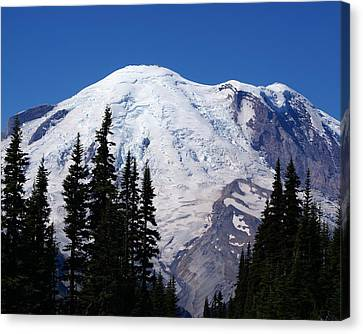 Mount Rainier Canvas Print by Sonja Anderson