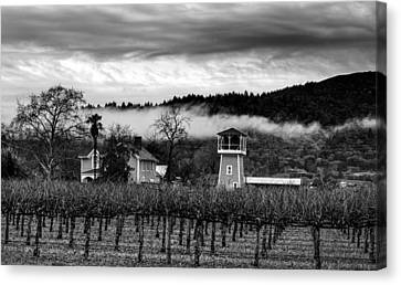 Napa Valley And Vineyards Canvas Print - Napa Valley Vineyard On A Cloudy Day by Mountain Dreams