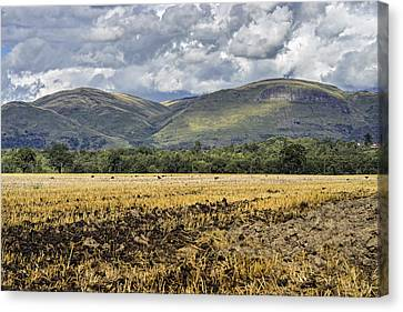 Ochil Hills Canvas Print