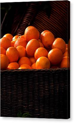 oranges in basket Rome italy Canvas Print by Xavier Cardell
