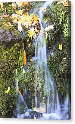 Oregon Cascades, Oregon, Usa Canvas Print by Craig Tuttle