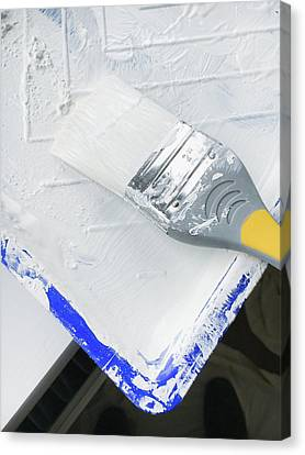 Ledge Canvas Print - Paint Brush by Tom Gowanlock