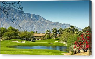 Palm Desert Golf Course Canvas Print by David Zanzinger