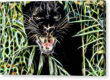 Panther Collection Canvas Print by Marvin Blaine