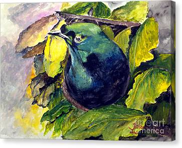 Canvas Print featuring the painting Paradise Bird by Jason Sentuf