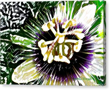 Passion Fruit Canvas Print - Passion Flower by James Temple