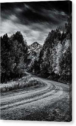 Path To The Mountains Canvas Print