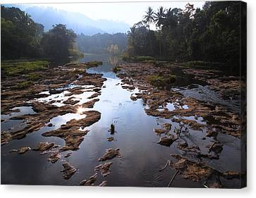 Periyar National Park - India Canvas Print by Joana Kruse