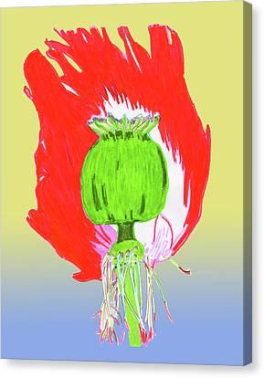 Pin Ink Water Color Canvas Print by Jay Pumphrey Jr