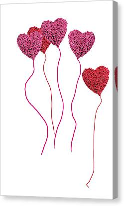 Pink Roses In Heart Shape Balloons  Canvas Print by Michael Ledray