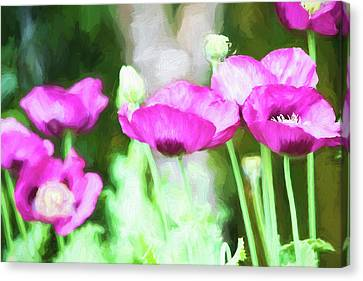 Canvas Print featuring the painting Poppies by Bonnie Bruno