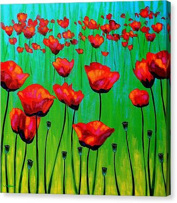 Nature Poster Art Canvas Print - Poppy Dance by John  Nolan