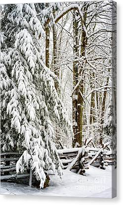 Canvas Print featuring the photograph Rail Fence And Snow by Thomas R Fletcher