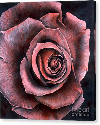Red Rose Canvas Print by Lawrence Supino