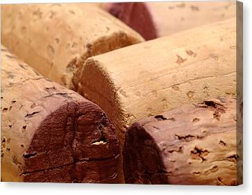 Cellar Canvas Print - Red Wine Corks by Frank Tschakert