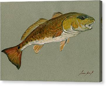 Saltwater Fishing Canvas Print - Redfish Painting by Juan  Bosco