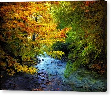 River View Canvas Print by Jessica Jenney