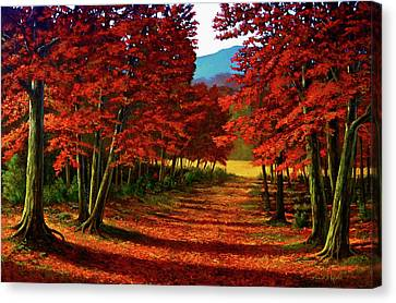 Road To The Clearing Canvas Print by Frank Wilson