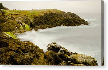 Rocky Point Seascape Canvas Print by Nick  Boren