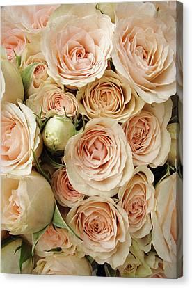 Wedding Bouquet Canvas Print - Rose Blush by Jessica Jenney