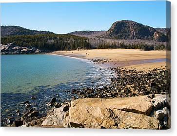 Sand Beach Acadia National Park Canvas Print by Glenn Gordon