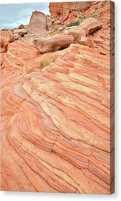Canvas Print featuring the photograph Sandstone Swirls In Valley Of Fire by Ray Mathis