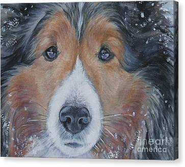 Shetland Sheepdog Canvas Print by Lee Ann Shepard