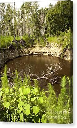 Sink Hole Canvas Print - Sinkhole, Florida by Inga Spence